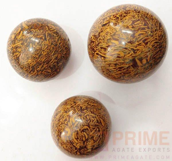SeaFossil(Maryam)-Balls